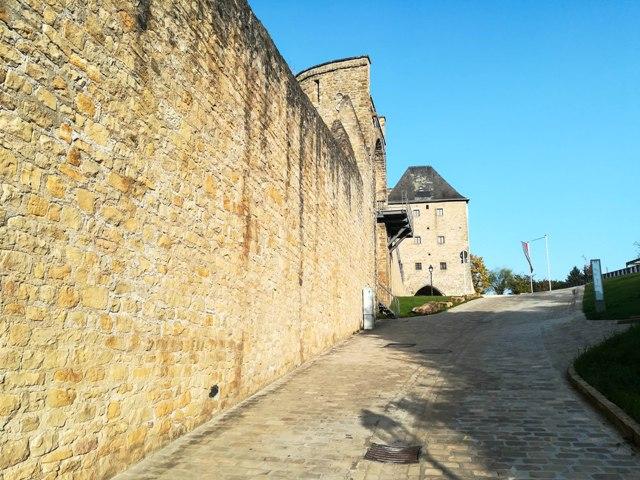 Wenzel Wall